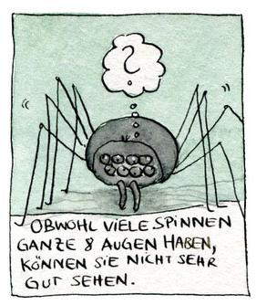 Wissenschaftscomic über Spinnen